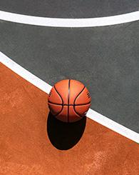 Photo terrain basket